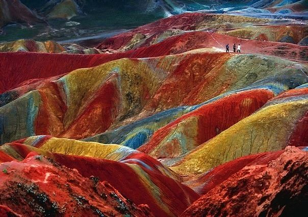 Amazing Nature 1